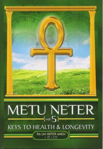 Metu neter vol 1 book