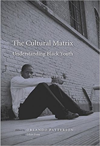 The Cultural Matrix- Understanding Black Youth_440x640